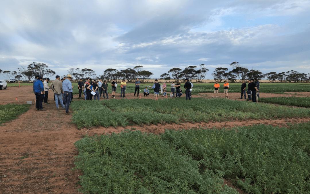 2021 Spring Crop Walk